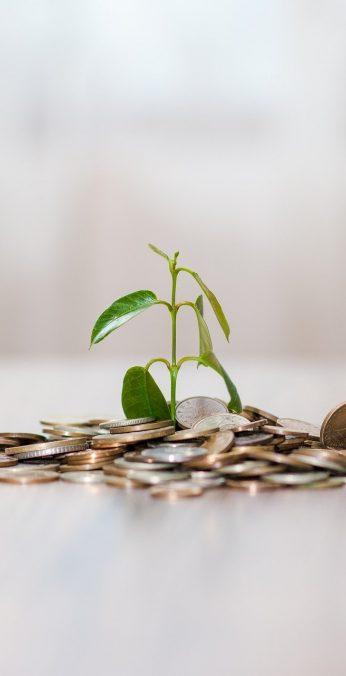 money, coins, finance